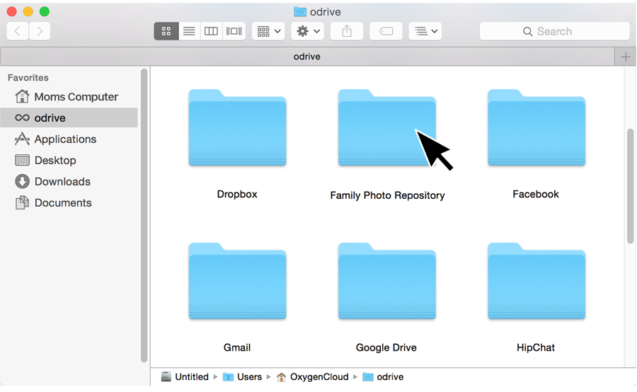 Members see spaces as a folder in odrive